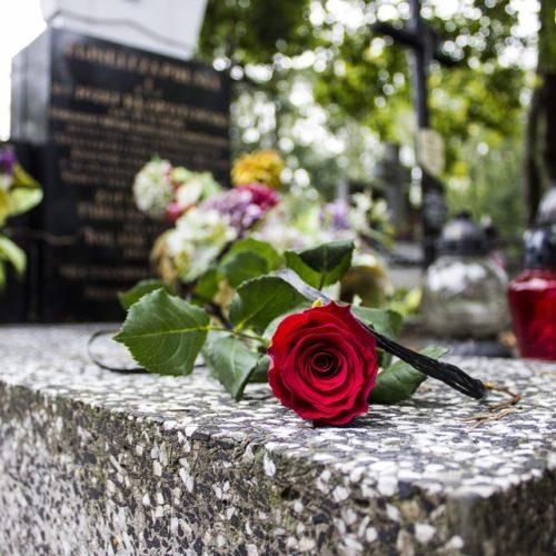 une rose rouge déposé sur le coin d'une pierre tombale