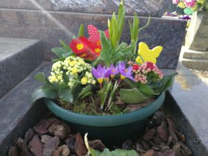 Coupe printanière avec différentes fleurs, primevère, crocus, jonquilles, tulipes.. pour Eternel Jardin