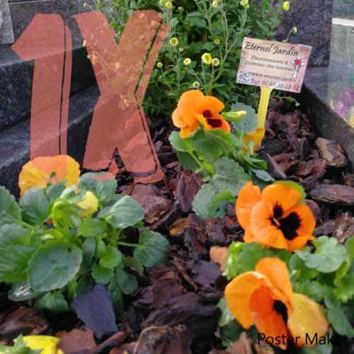 Une main nettoyant la tombe avec une brosse, qui représente la formule 1x nettoyage et fleurissement, proposée par Eternel-jardin.com