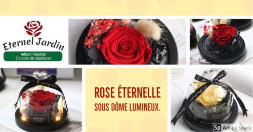 """Bulle de rose """"féerique"""", lumineuse contenant une rose éternelle de 8 cm sous une cloche en verre surmonté d'un cœur. Un cadeau digne d'un conte de fée... Véritable rose éternelle et fleurs séché, sous un dôme lumineux."""