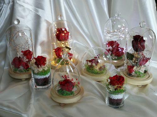 Collection roses éternelles rouge
