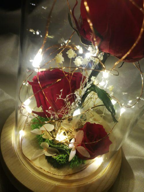 3 Roses éternelle sous cloche lumineuse couleur chaude