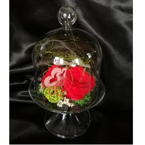 Rose éternelle rouge, cloche sur pied