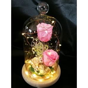 Rose éternelle rose, sous un dôme lumineux