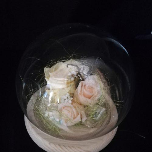 3 Roses éternelles crème, globe boule en verre et socle en bois