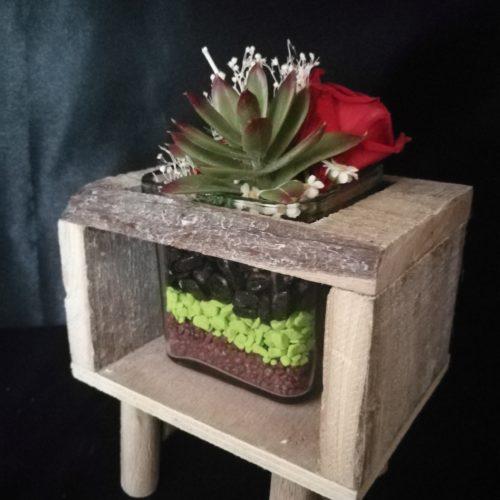 1 Rose éternelle rouge et succulente, sur socle en bois et contenant en verre